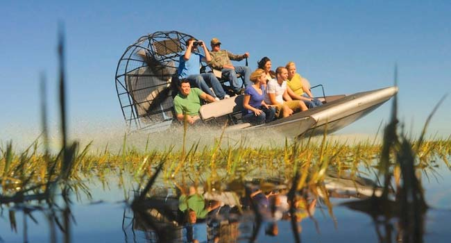 Airboat Tours Everglades Miami Ride The Wind Everglades Airboat