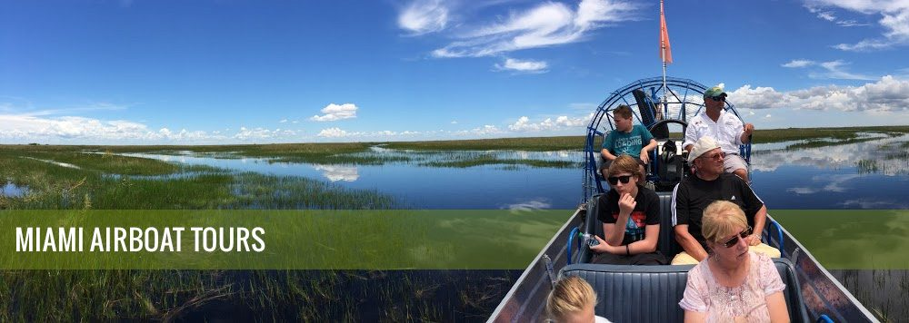 Miami Airboat Tours Ride The Wind Best Airboat Everglades Tours Fl
